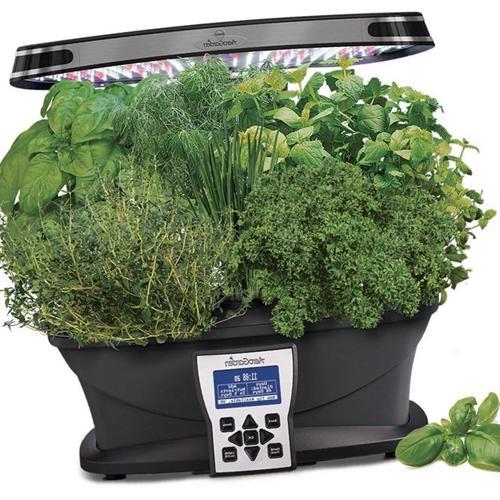 Click And Grow vs Aerogarden - Comparación de jardines inteligentes