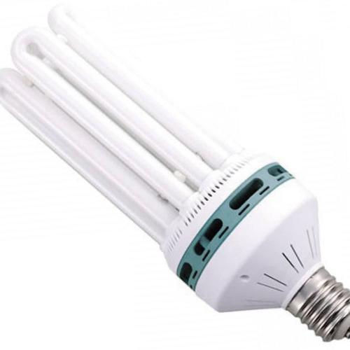 ¿Cuáles son las mejores luces de cultivo de interior para las plantas?