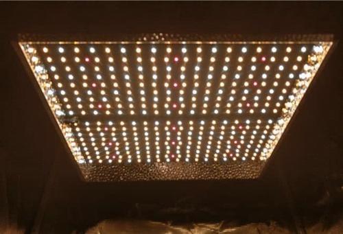 Mars Hydro TS 1000 LED Grow Light Revisión
